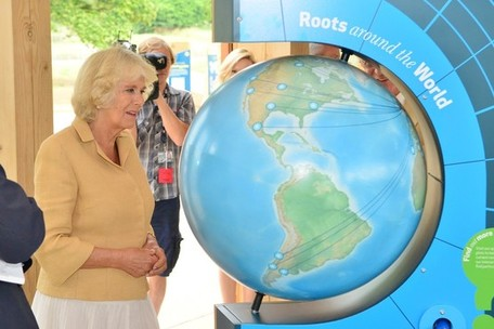 duchess of cornwall globe, westonbirt globe, national arboretum globe, lander and may globe
